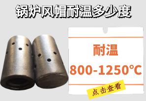 锅炉风帽耐温多少度-可耐温800-1250℃不变形[大资本]