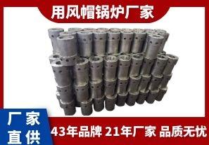 用风帽锅炉厂家-质优的品质从品牌入手[江河]